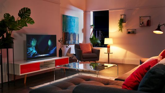 Small TV sales skyrocket as viewers stay indoors - but do you need one?