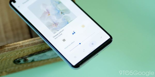 Pixel 6 series 'Bloom' backgrounds are live wallpapers w/ blur and parallax