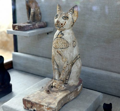 Dozens of cat mummies discovered in Egyptian tombs
