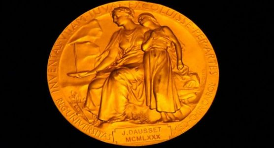 Covering the Nobels-is it worth the bother?