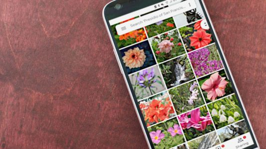Google Photos now allows you to search for text in your pics