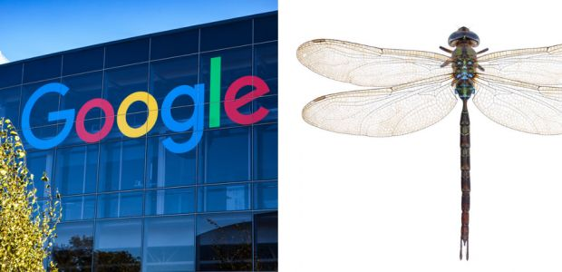 Find Out Why People Are Freaking Out After Learning The Secret Details From Google's Project Dragonfly