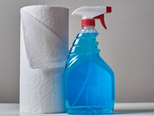 Clean up life's messes with the world's best paper towels